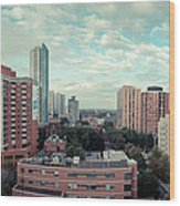 Panorama-dt-toronto Looking East Wood Print