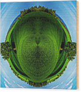Panorama Earth Of A Green Meadow And Blue Sky Wood Print