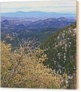 Panorama Emory Pass Vista Nm Wood Print