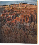 Panorama Of Bryce Canyon Amphitheater Wood Print