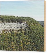 Panorama Of Cliff At Letchworth State Park Wood Print