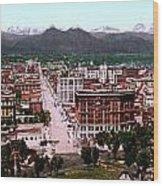 Panorama Of Denver Wood Print