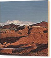 Panorama Of Goblin Valley State Park Utah Wood Print