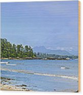 Panorama Of Pacific Coast On Vancouver Island Wood Print by Elena Elisseeva