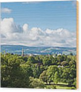 Panorama Of Phoenix Park And Wicklow Mountains Wood Print
