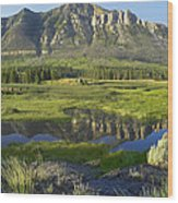 Panorama Of Windy Mountain Wyoming Wood Print