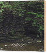 Panorama Of Wolf Creek At Letchworth State Park Wood Print