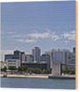 Panorama Over Lisbon Oceanarium Wood Print