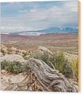 Panorama Point - La Sal Mountains - Arches National Park - Ut Wood Print