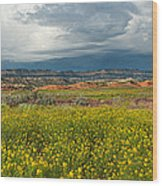 Panorama Striaght Cliffs And Rabbitbrush Escalante Grand Staircase  Wood Print