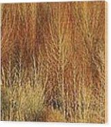 Panorama Winter Trees Color Wood Print