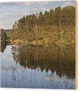 Panoramic Landscape Wood Print