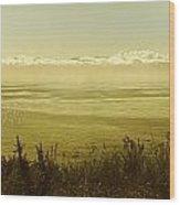Panoramic Of Sailing Ship, Beacon Hill Wood Print