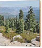Panoramic Point Wood Print