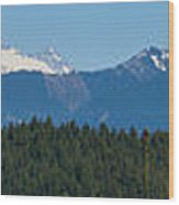Panoramic Rainier Rt.25 Wood Print