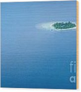 Panoramic Sea Background  Wood Print
