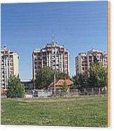 Panoramic View Wood Print