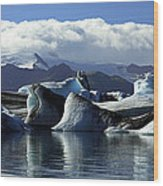 Panoramic View Of Icebergs And Glaciers Wood Print