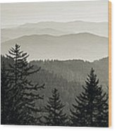 Panoramic View Of Trees With A Mountain Wood Print