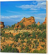 Panoramic View, Sedona, Arizona Wood Print