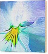 Pansy Flower 6 Wood Print
