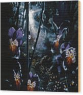 Pansy Path Wood Print
