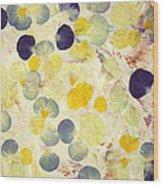Pansy Petals Wood Print by James W Johnson