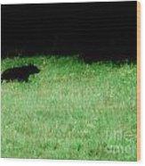 Papa Bear Wood Print