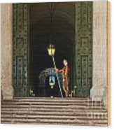 Papal Swiss Guard At The Vatican Museums Wood Print