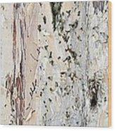 Paper Bark Astract Wood Print