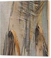 Paper Bark Wood Print