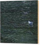 Paper Boat Wood Print by Joana Kruse
