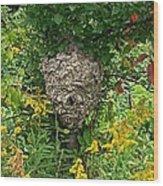 Paper Hornet Nest Wood Print by Garren Zanker