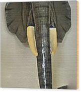Paper Mache Elephant By Sergio Bustamante Wood Print