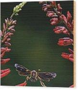 Paper Wasp In Flight Wood Print