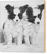 Papillon Puppies Wood Print