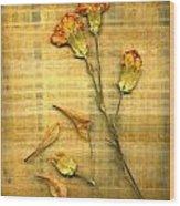 Papyrus2 Wood Print