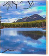 Paradise 2 Wood Print