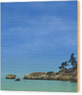 Paradise Beach Wood Print by Marco Oliveira