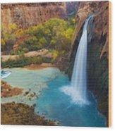 Paradise Falls Wood Print