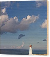 Paradise Island Lighthouse Wood Print by Stephanie McDowell