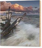 Paradise Lost Wood Print
