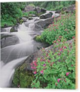 Paradise River And Spring Wildflowers Wood Print