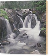 Paradise River Cascade Mt Rainier Wood Print