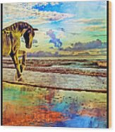 Paradise Sunset Wood Print by Betsy Knapp