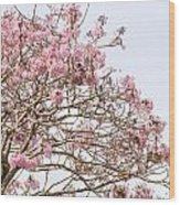 Parakeets Hiding In The Flowers Wood Print