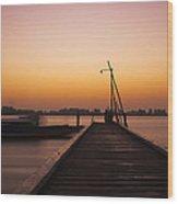 Paramaribo River Wood Print