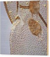 Parasitic Mites 501 Wood Print