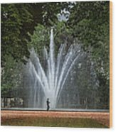 Parc De Bruxelles Fountain Wood Print