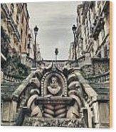 Paris - Statue Wood Print